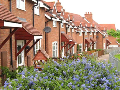 buy-to-let advice